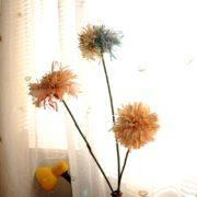 KH_013_cvete_flower_4