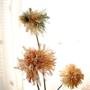 KH_013_cvete_flower_5